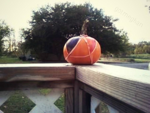 My cute Ophelia pumpkin standing proudly on our porch. Wren likes it, she kept rubbing against it the other day.