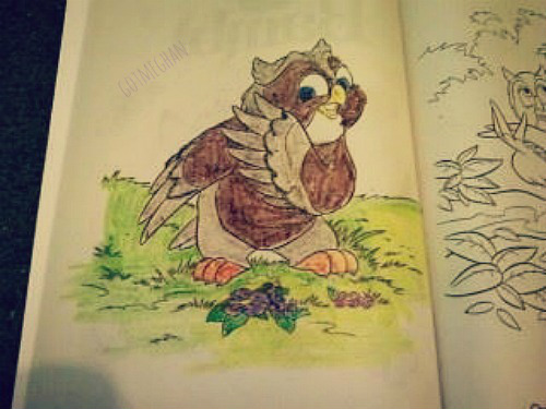 """My owl in my coloring book. I gave him a makeover than from what he normally looks like in """"Bambi"""" movie."""