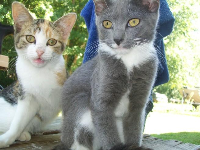 Toni & Oscar