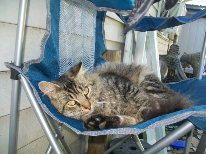 This is was one out of three my mom took of Bear Bear in his chair